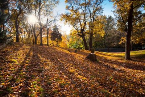 depositphotos_103338278-stock-photo-hillside-graveyard-autumn